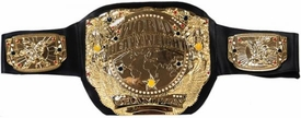 WWE Wrestling Kids Size Replica Belt with 4 Interchangeable Plates