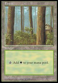 Magic the Gathering APAC & Euro Lands Promo Card Forest [APAC Set 1]