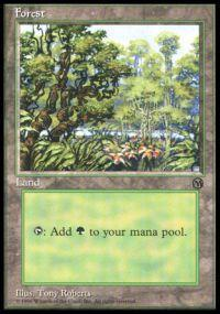 Magic the Gathering Arena Promo Card Forest [Arena 1996]