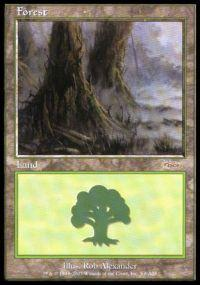 Magic the Gathering Arena Promo Card Forest [Arena 2003]