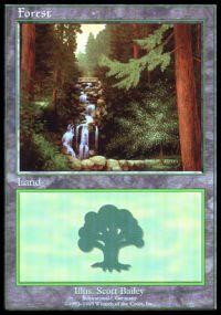 Magic the Gathering APAC & Euro Lands Promo Card Forest [Euro Set 1]