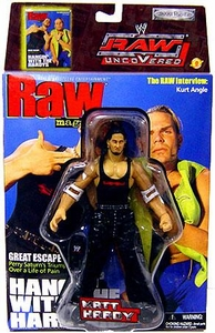 WWE Jakks Pacific Wrestling Action Figure Raw 10th Anniversary Matt Hardy