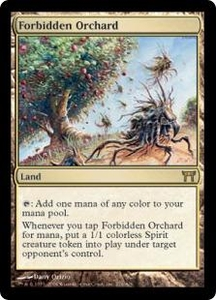 Magic the Gathering Champions of Kamigawa Single Card Rare #276 Forbidden Orchard