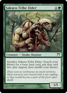 Magic the Gathering Champions of Kamigawa Single Card Common #239 Sakura-Tribe Elder