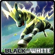 Pokemon Single Cards Black & White Series Black & White