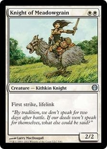 Magic: The Gathering Duel Decks: Knights vs. Dragons Single Card White Uncommon #5 Knight of Meadowgrain