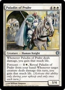 Magic: The Gathering Duel Decks: Knights vs. Dragons Single Card White Uncommon #22 Paladin of Prahv