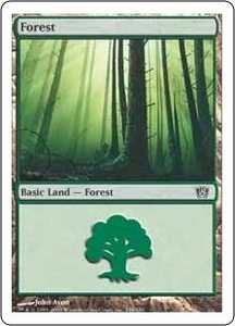 Magic the Gathering Eighth Edition Single Card Land #347 Forest [Random Artwork]
