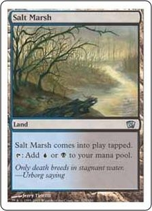 Magic the Gathering Eighth Edition Single Card Uncommon #325 Salt Marsh