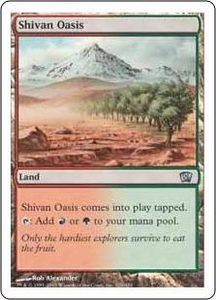 Magic the Gathering Eighth Edition Single Card Uncommon #326 Shivan Oasis