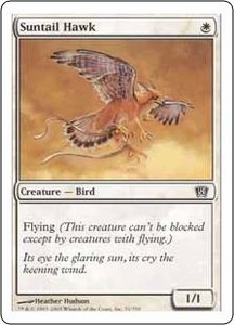 Magic the Gathering Eighth Edition Single Card Common #51 Suntail Hawk