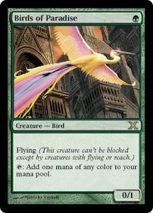 Magic the Gathering Tenth Edition Single Card Rare #252 Birds of Paradise