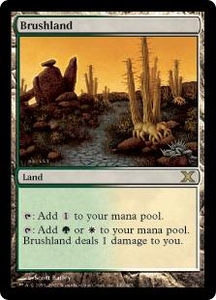 Magic the Gathering Tenth Edition Single Card Rare #349 Brushland