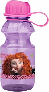 Disney / Pixar BRAVE Movie 14oz. Tritan Hydrocanteen