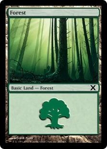 Magic the Gathering Tenth Edition Single Card Land #380 Forest [Random Artwork]