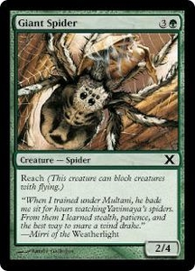 Magic the Gathering Tenth Edition Single Card Common #267 Giant Spider