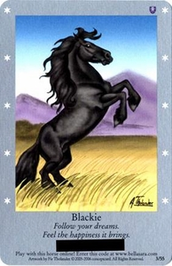 Bella Sara Horses Trading Card Game Series 1 Single Card 3/55 Blackie