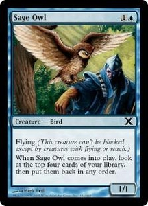 Magic the Gathering Tenth Edition Single Card Common #104 Sage Owl