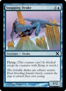 Magic the Gathering Tenth Edition Single Card Common #110 Snapping Drake