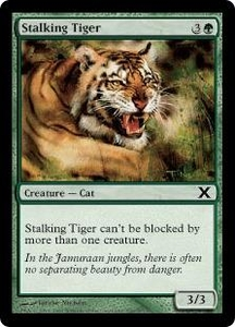 Magic the Gathering Tenth Edition Single Card Common #299 Stalking Tiger