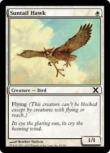 Magic the Gathering Tenth Edition Single Card Common #50 Suntail Hawk