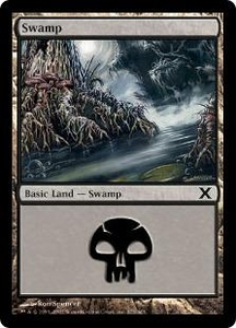 Magic the Gathering Tenth Edition Single Card Land #372 Swamp [Random Artwork]