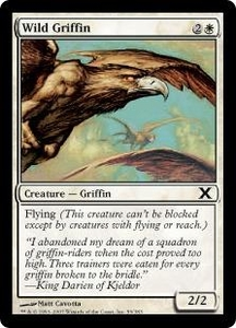 Magic the Gathering Tenth Edition Single Card Common #59 Wild Griffin