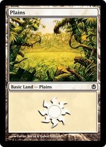 Magic the Gathering Duel Decks: Ajani vs. Nicol Bolas Single Card Land Land #40 Plains