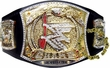 WWE Wrestling Adults Replica Championship Belts