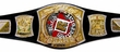 WWE Wrestling Kids Replica Championship Belts