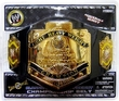 WWE Wrestling Jakks Pacific Kids Championship Belts
