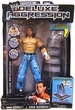 WWE Wrestling Action Figures Deluxe Aggression Series 10