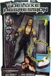 WWE Wrestling Action Figures Deluxe Aggression Series 2