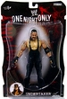 WWE Wrestling Action Figures PPV Series 19