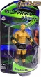WWE Wrestling PPV Series Action Figures Summerslam