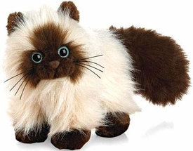 Webkinz Plush Himalayan Cat