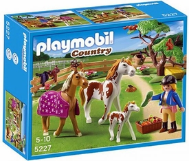 Playmobil Pony Ranch Set #5227 Paddock, Horses & Foal