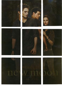 NECA Twilight Movie New Moon Chase Cards Movie Poster Set [9 Cards]
