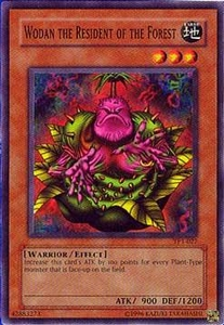 YuGiOh Tournament Pack 1 Single Card Common TP1-027 Wodan the Resident of the Forest