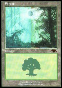 Magic the Gathering Other Promo Card Forest [Guru]
