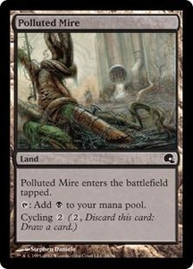 Magic the Gathering Premium Deck Series: Graveborn Single Card Land Common #26 Polluted Mire