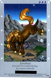 Bella Sara Horses Trading Card Game Series 1 Single Card 14/55 Jonathan
