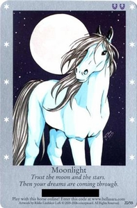 Bella Sara Horses Trading Card Game Series 1 Single Card Moonlight