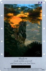 Bella Sara Horses Trading Card Game Series 1 Single Card 28/55 Shadow Only Available in Series 1