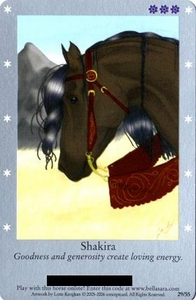 Bella Sara Horses Trading Card Game Series 1 Single Card 29/55 Shakira