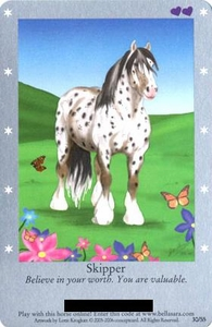 Bella Sara Horses Trading Card Game Series 1 Single Card 30/55 Skipper