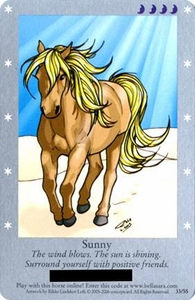 Bella Sara Horses Trading Card Game Series 1 Single Card 33/55 Sunny Only Available in Series 1