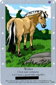 Bella Sara Horses Trading Card Game Series 1 Single Card 35/55 Walter