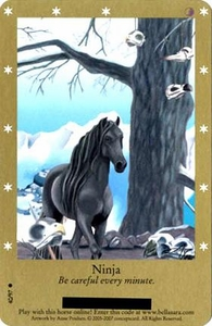 Bella Sara Horses Trading Card Game Series 2 Single Card Common 40/97 Ninja