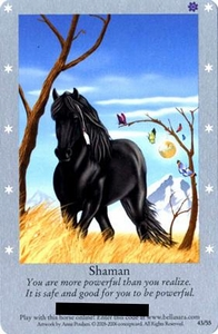 Bella Sara Horses Trading Card Game Series 1 Single Card Rare 43/55 Shaman